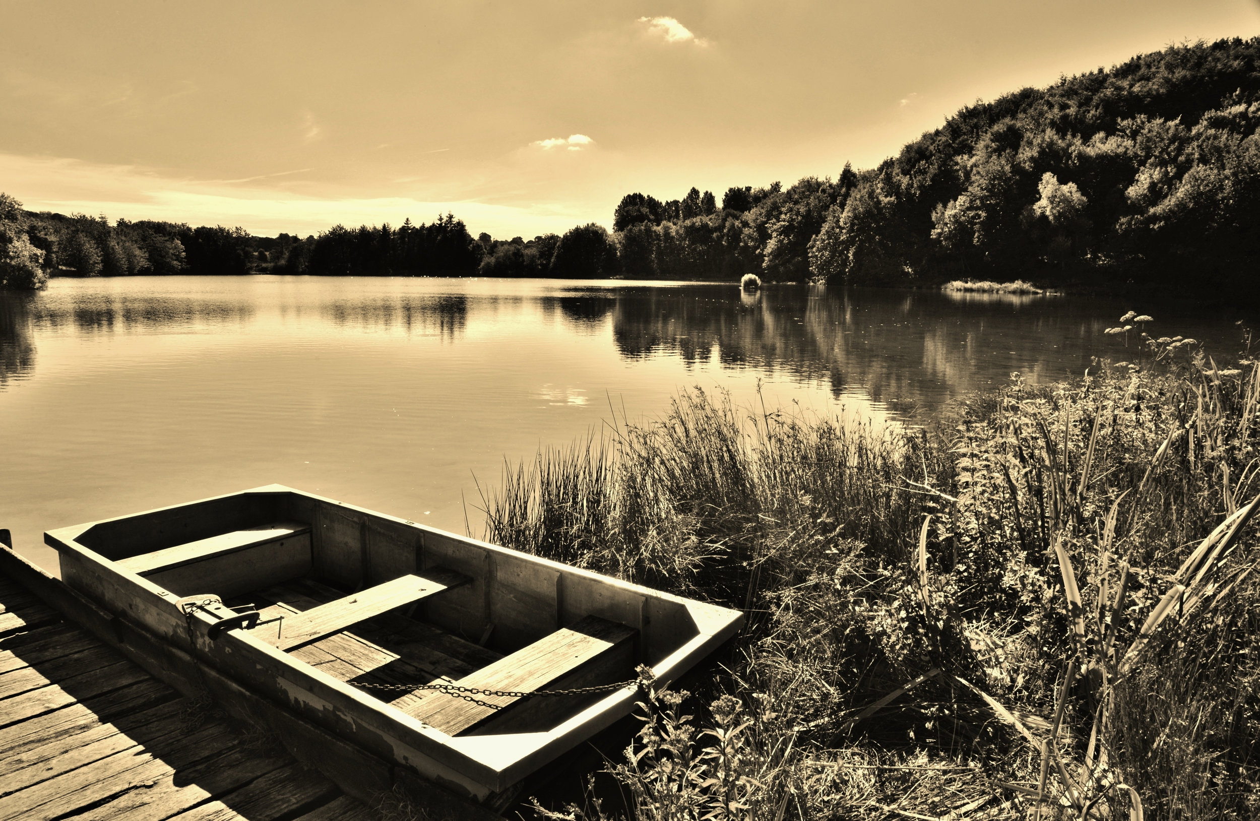 tanfield lake 5.jpg
