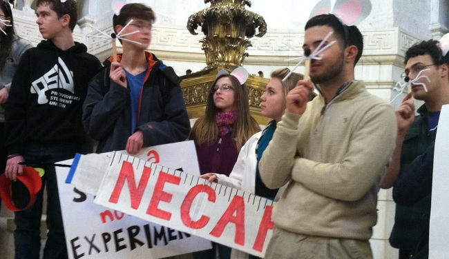 Providence high schoolers hold signs protesting high stakes testing, dressed as mice with paper syringe needle-shaped NECAP sign.