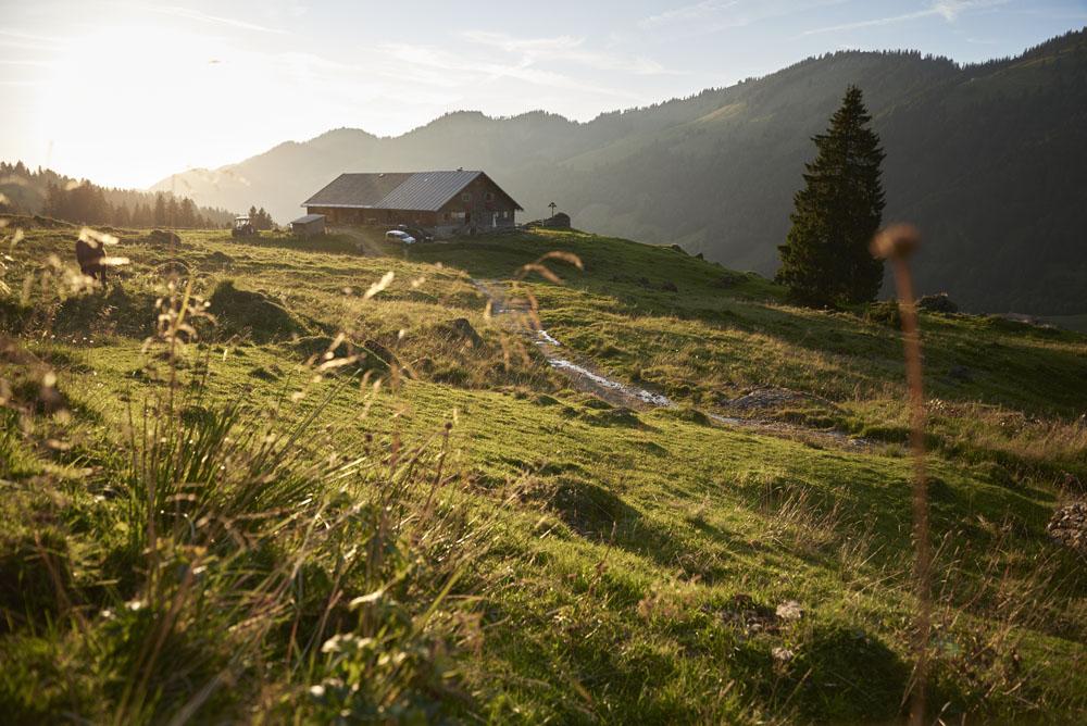 Alpe Helmingen