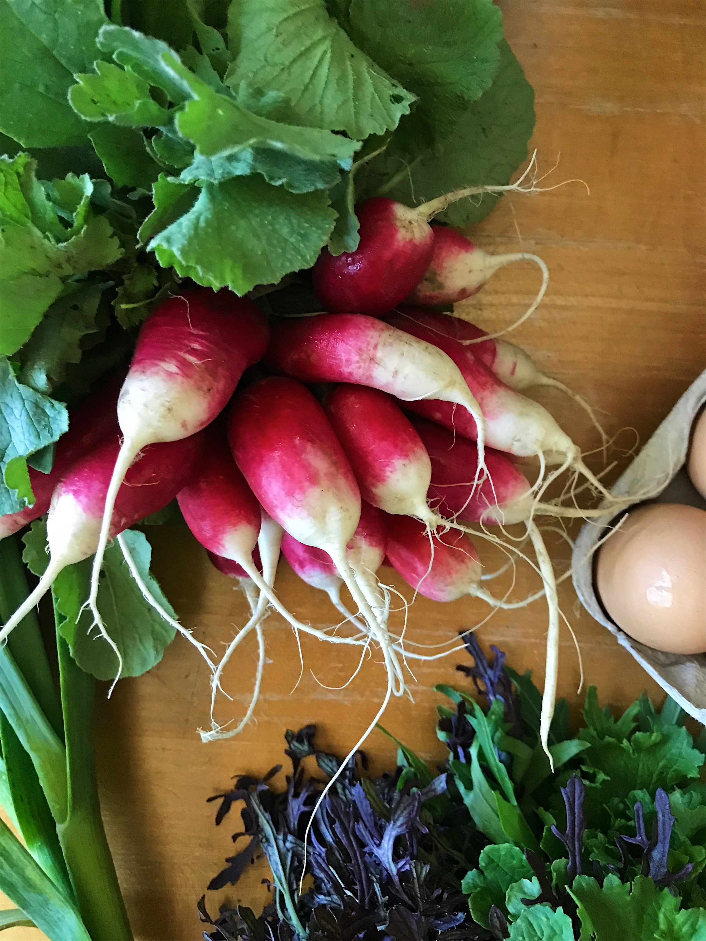 Goodies from last fall's CSA with New Earth Farm