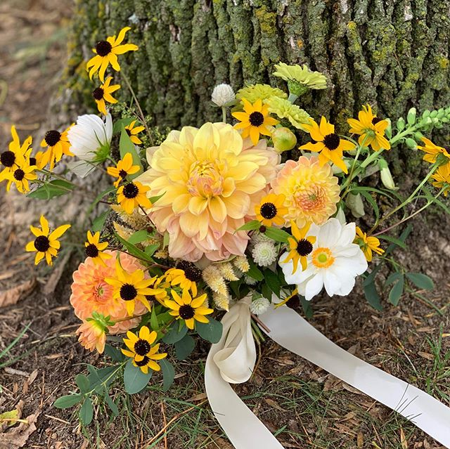 Cheers to colorful bridal bouquets! 💛 #dahlias #rudbeckiatriloba #mnweddings #flowerfarm #flowerfarmer #localflowers #minnesota