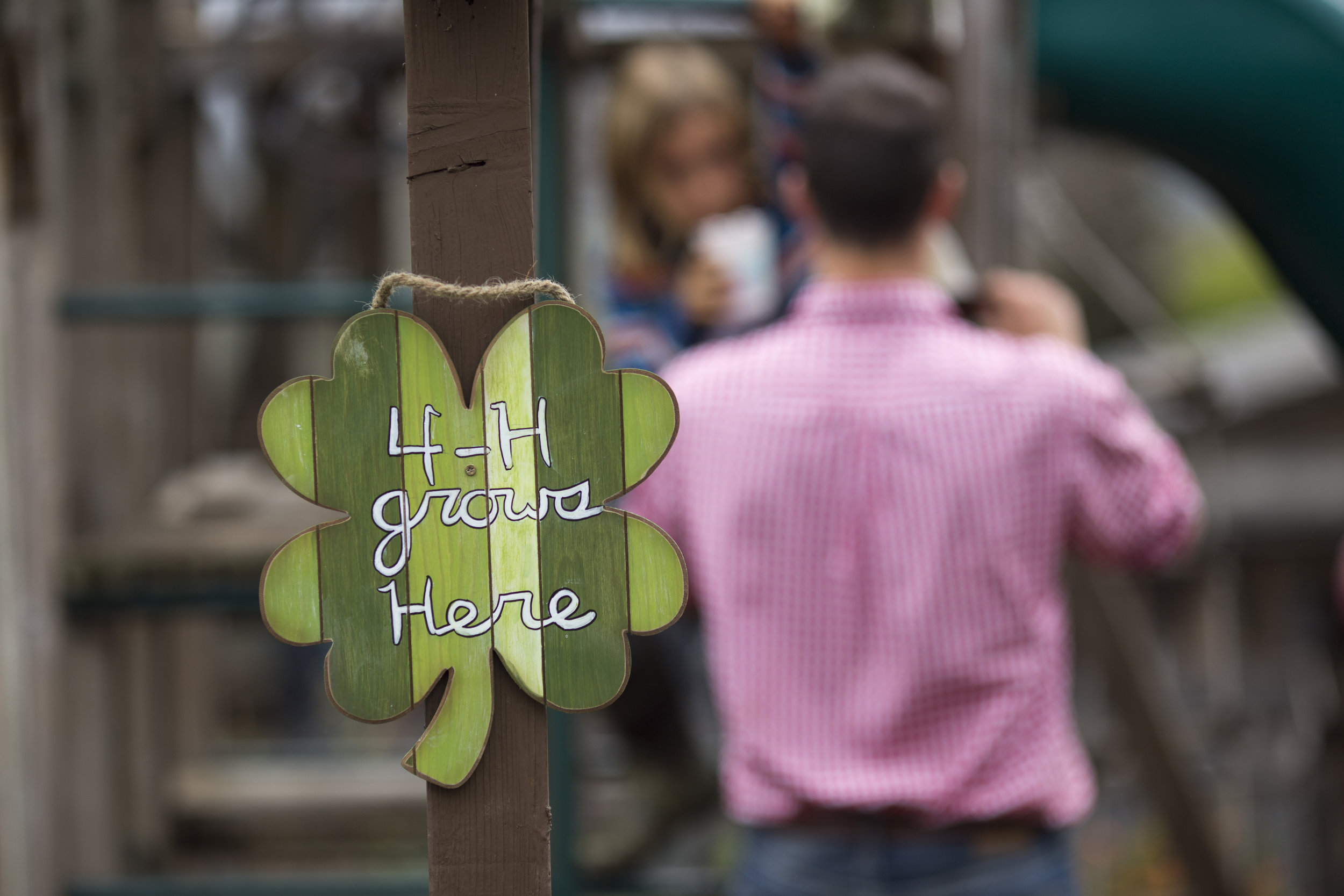 4-H Grows Here Wood Sign.jpg