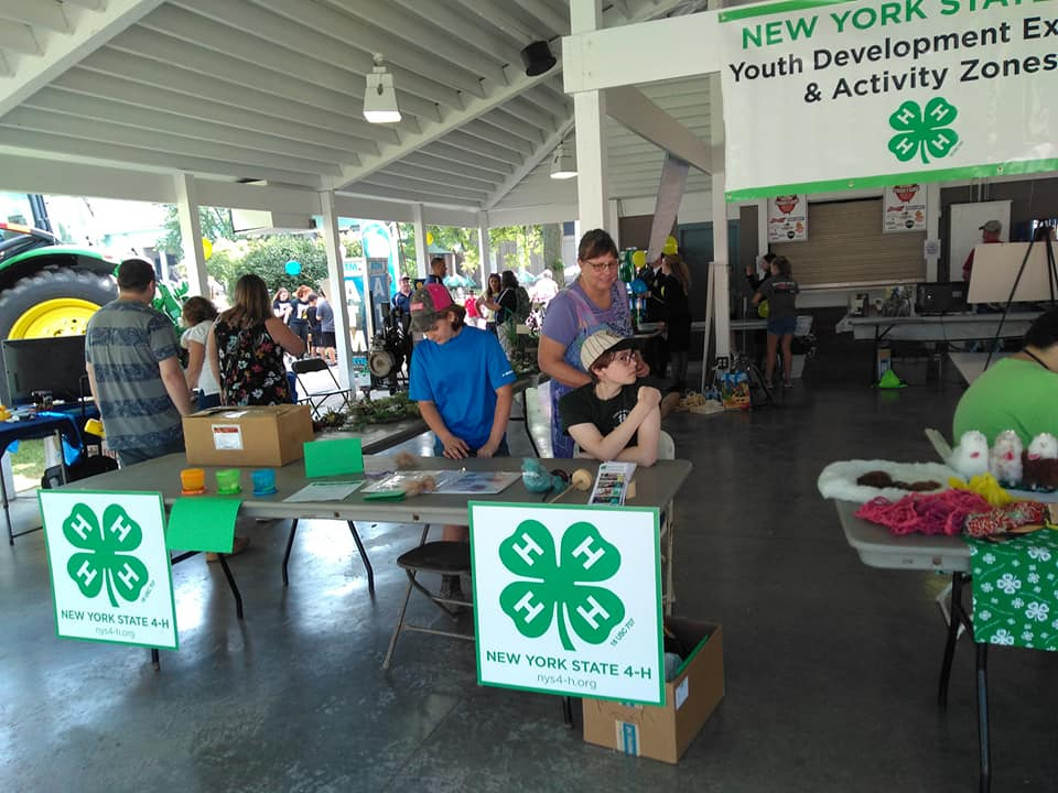 2019 New York State Fair — New York State 4-H Youth Development