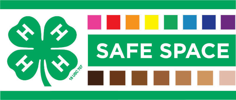 nys_4-h_safe_space_logo_official-final_0.png