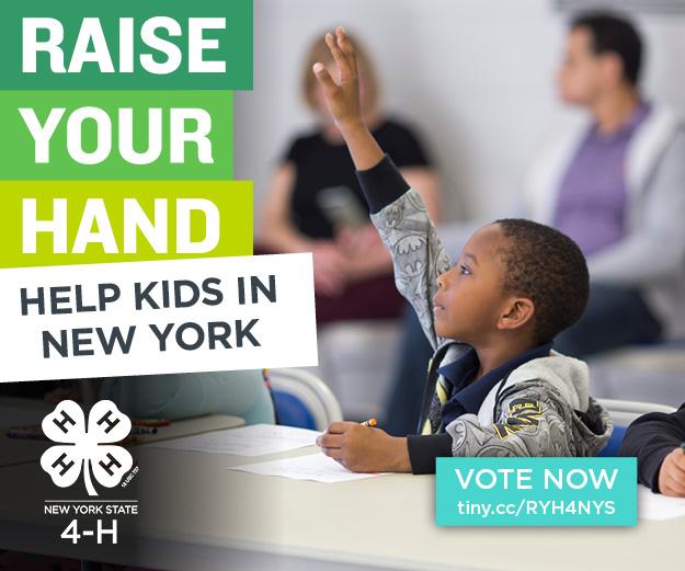 NYRYH - 300x250 - Help Kids15.jpg