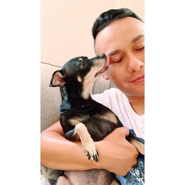 Puppy kisses make the day better!.... . . . #Chicago #selenasophianieto #mybabygirl #pilsen #minpin #minpinstagram #puppykisses #saturdayvibes #roadtrip #theonlyhoracio #puppylove #dogkisses #reunited #myheartisfull #dingyproject #instadogs #showyourdingy #rescuedog