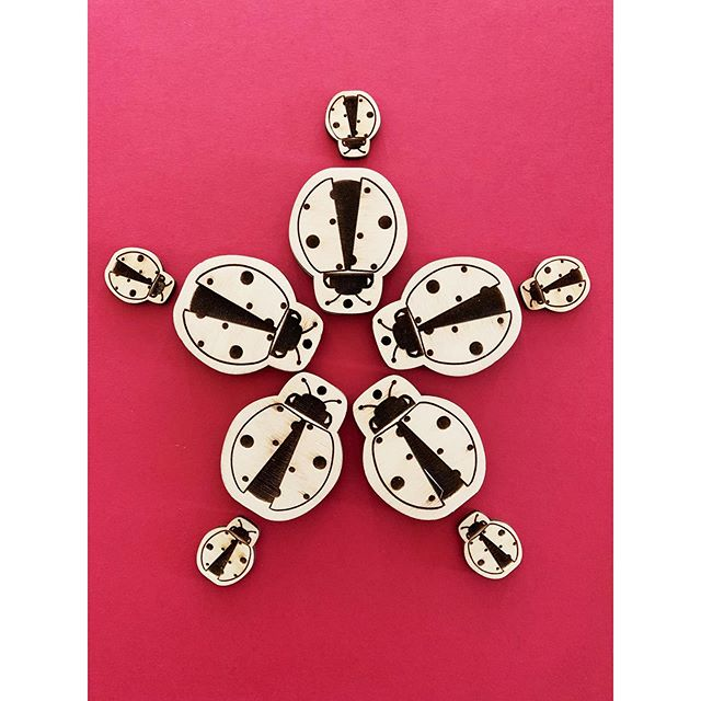 Meeting of the Ladies! . . . #dingyproject #accessories #helpinganimals #ladybugs #rescuedontbuy #animalactivist #adoptdontshop #project #wooden #fashionforacause #menstyle #keychains #womenstyle #keychain #ladybug #insect #insects #showyourdingy #dingy #dingydingy #shoplocal #locallove #fashion #fashionblogger #igfashion #socialenterprise #animaleducation