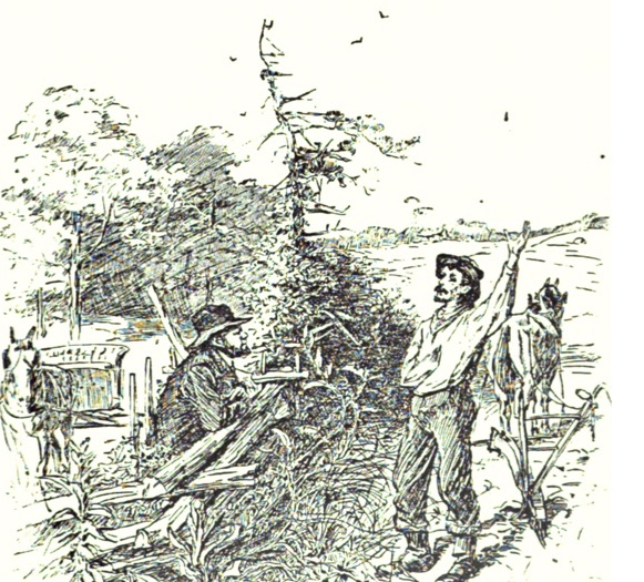 colportage - A chapter from J. William Jones' 1887 book Christ in the Camp details some of the colportage work that took place in the Confederate camps during the American Civil War. These are amazing first-hand accounts.