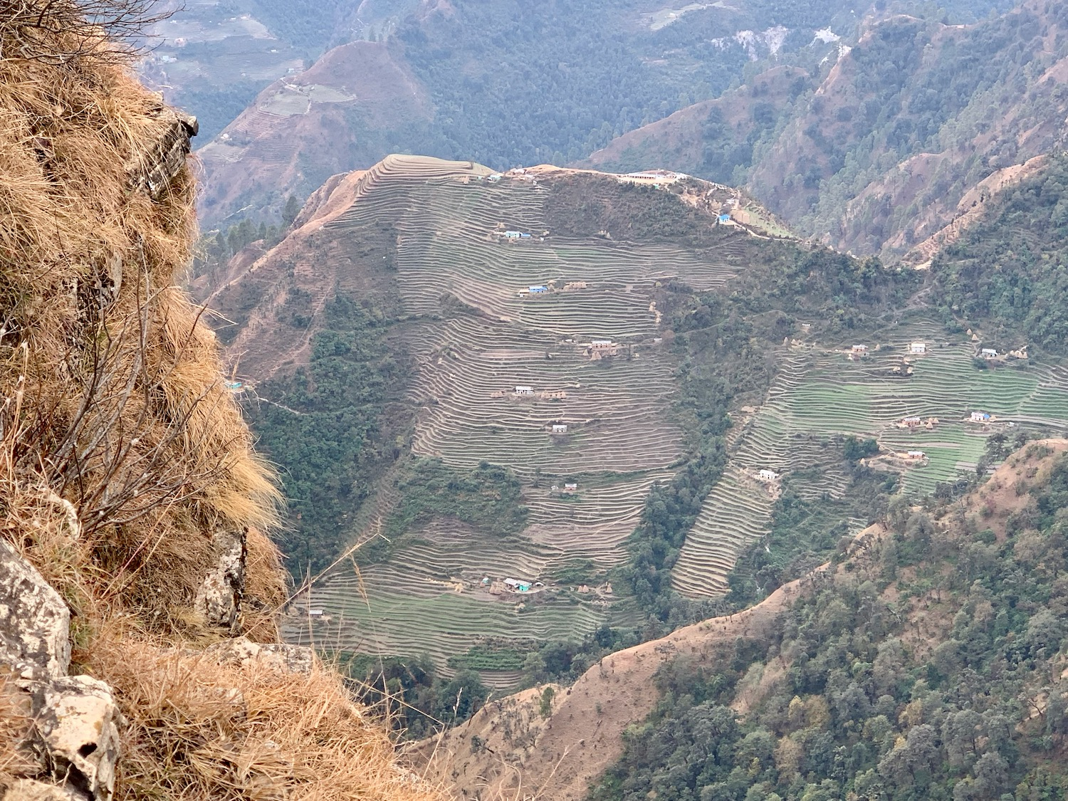 We distributed the Word of God to the houses on these terraces some years ago.