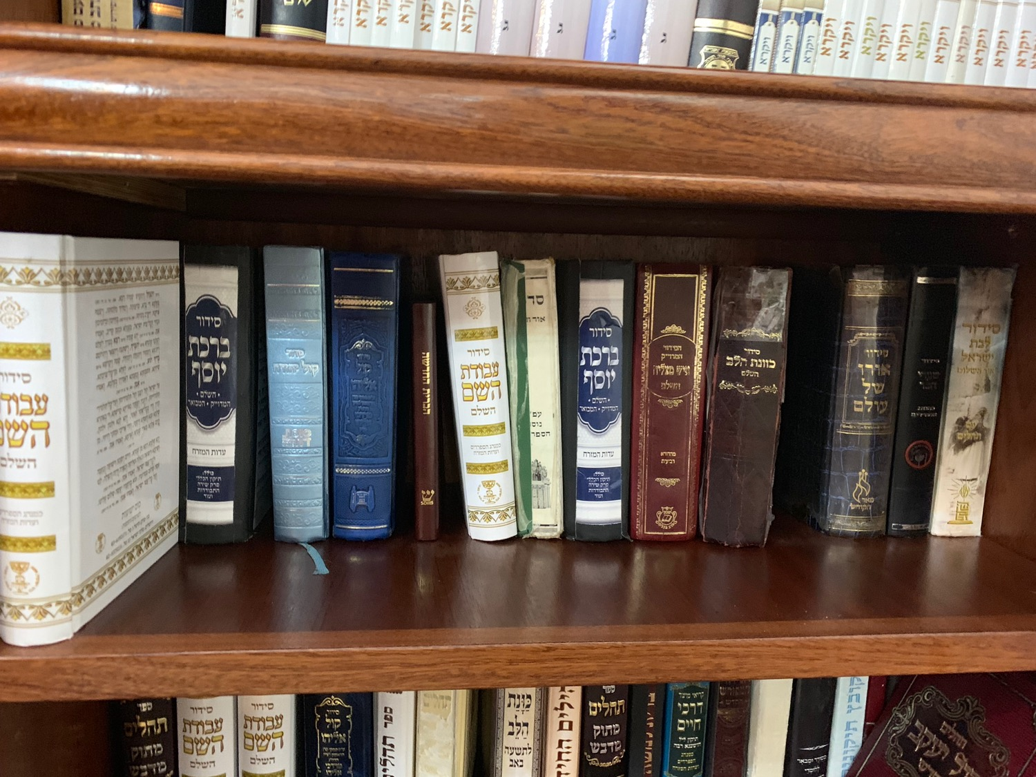Can you spot the Hebrew New Testament we slipped onto a bookshelf in a Yeshiva at Abraham's Tomb?