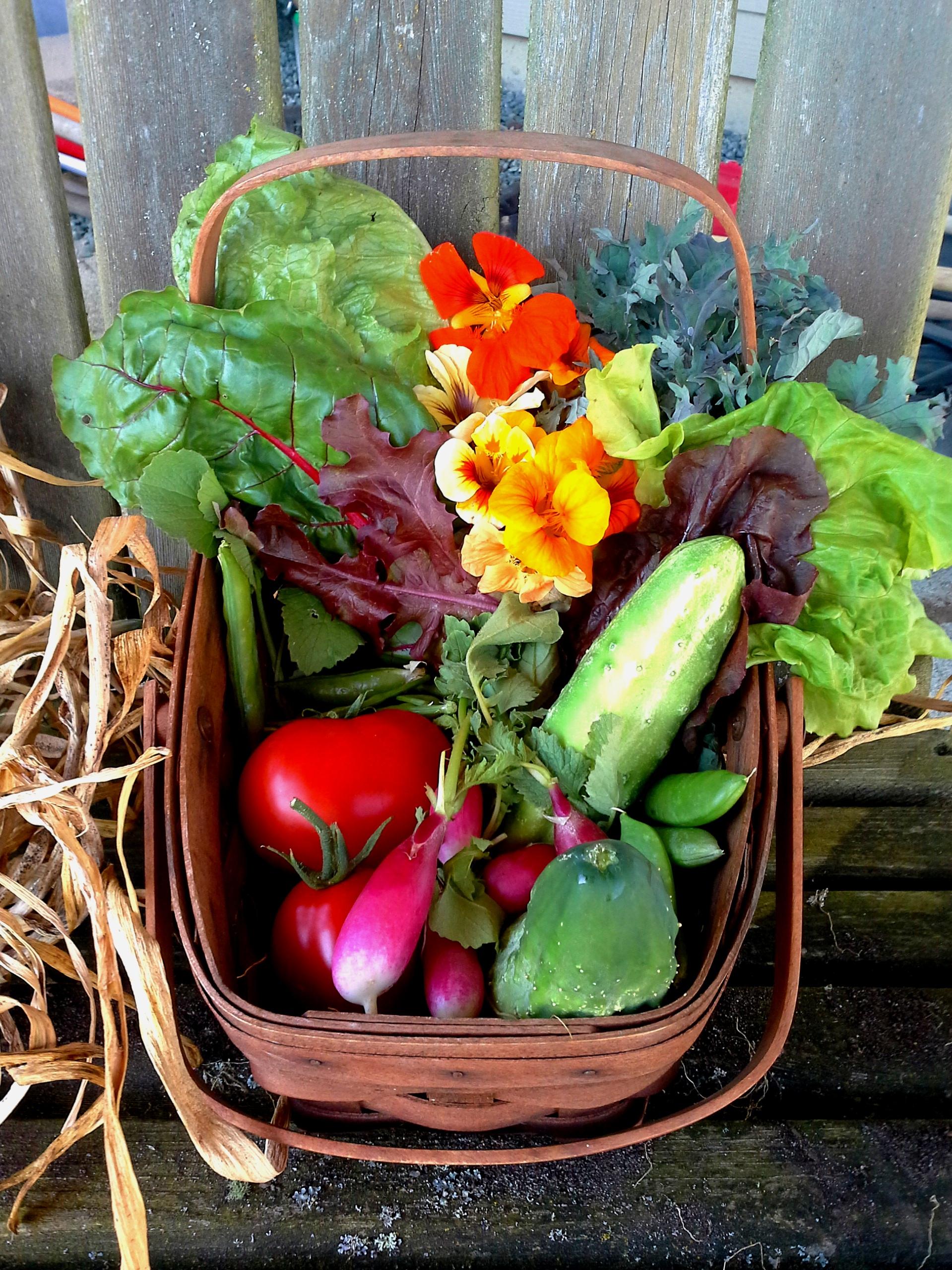 My summer gathering basket.