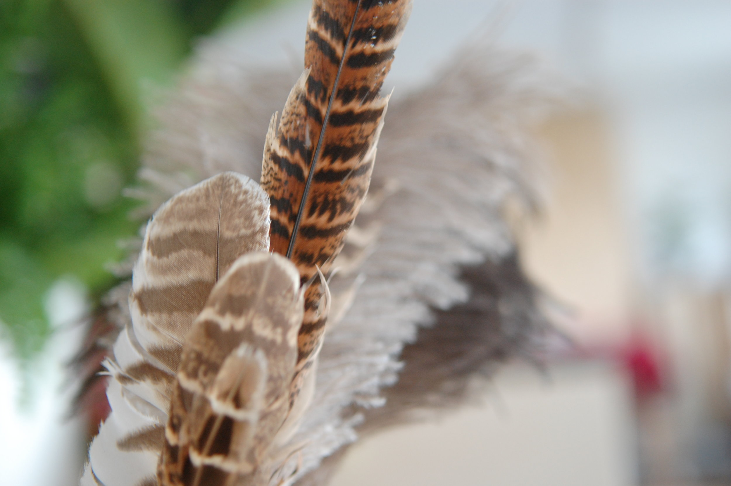 Pheasant Feather Headdress Melonmade