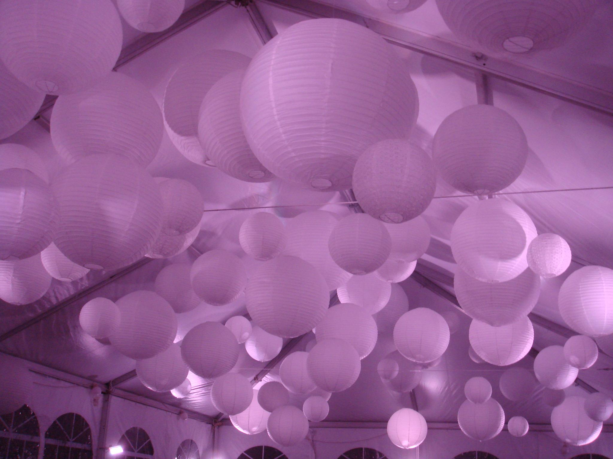Lanterns-Violet.JPG