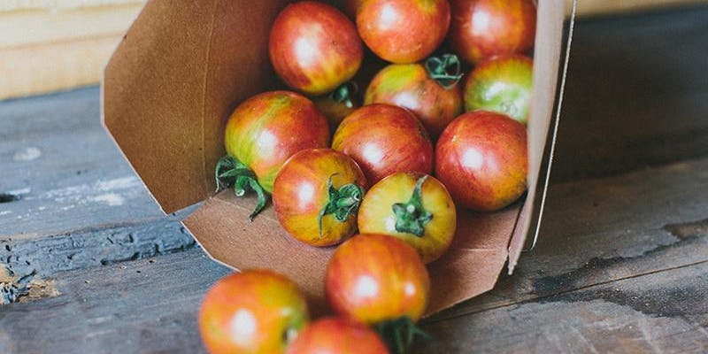 tomatojubilee.jpg