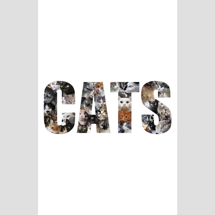 CATS-art-print-SMALL-SQ.jpg