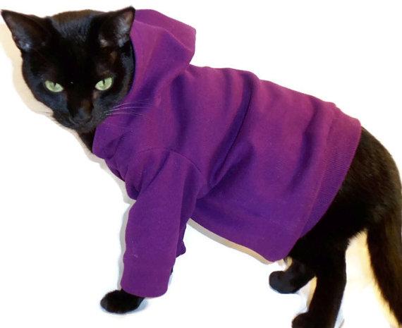 cat-hoodie-etsy.jpg
