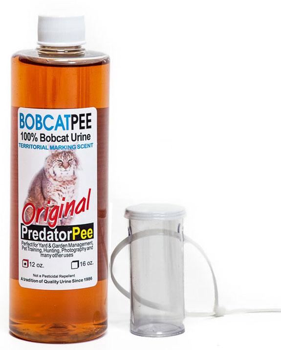 Bobcat-Tag-PredatorPee-4183.jpg