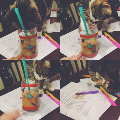"""""""Mr. Mittens will get those pens even if he has to knock that drink off too!"""""""