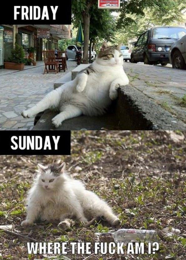friday_vs_sunday