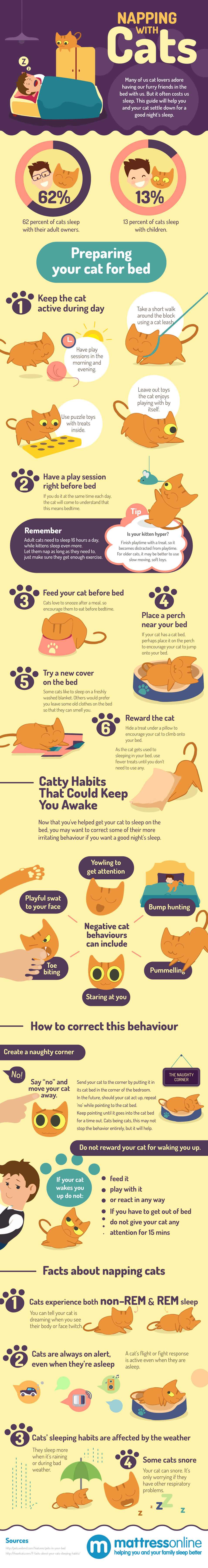 napping-with-cats-infographic