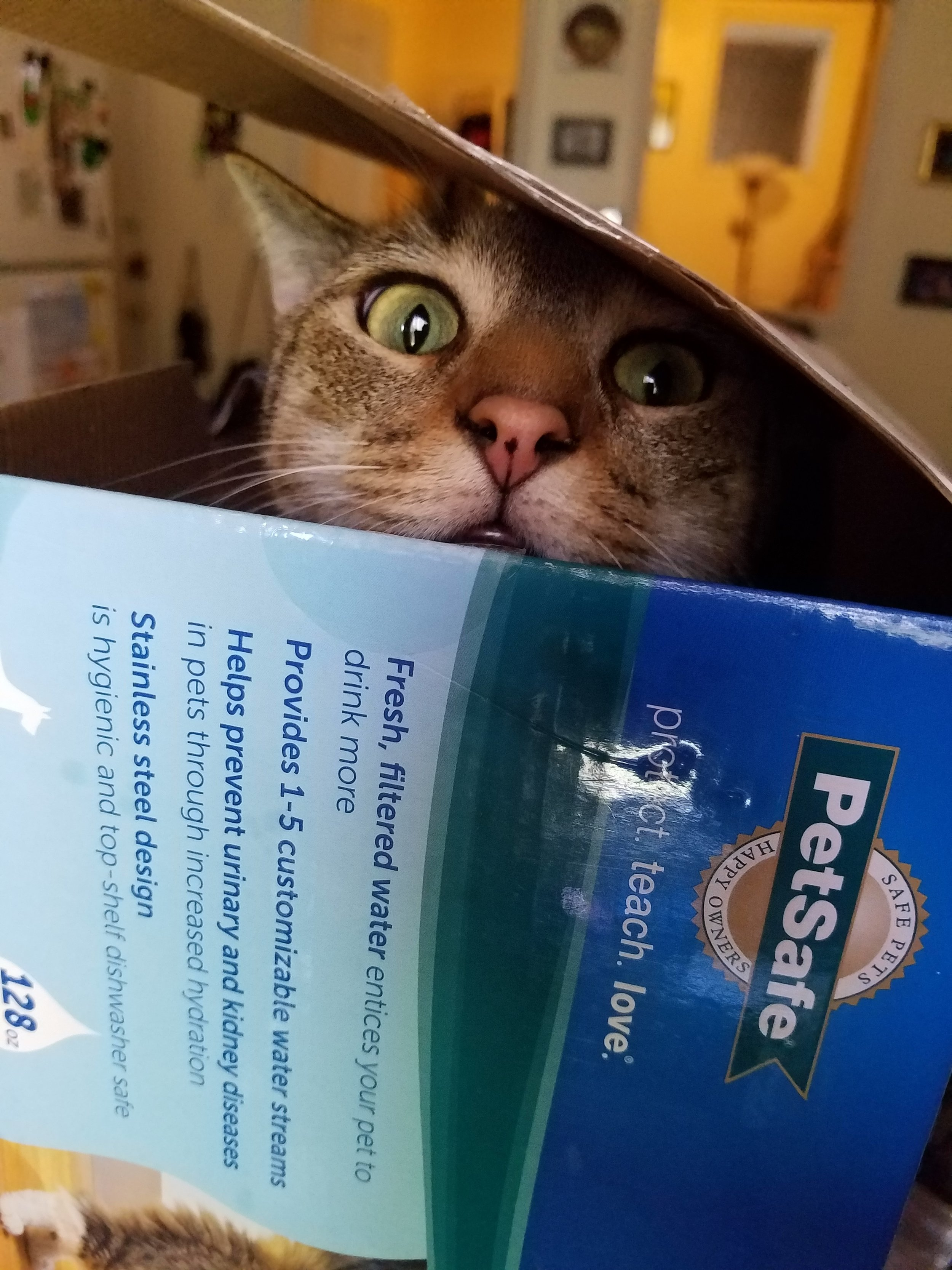 And yes, Thomas, we're keeping the box.