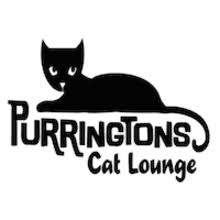 PURRINGTONS CAT LOUNGE - 3529 NE Martin Luther King Jr. BoulevardPortland, OR 97212
