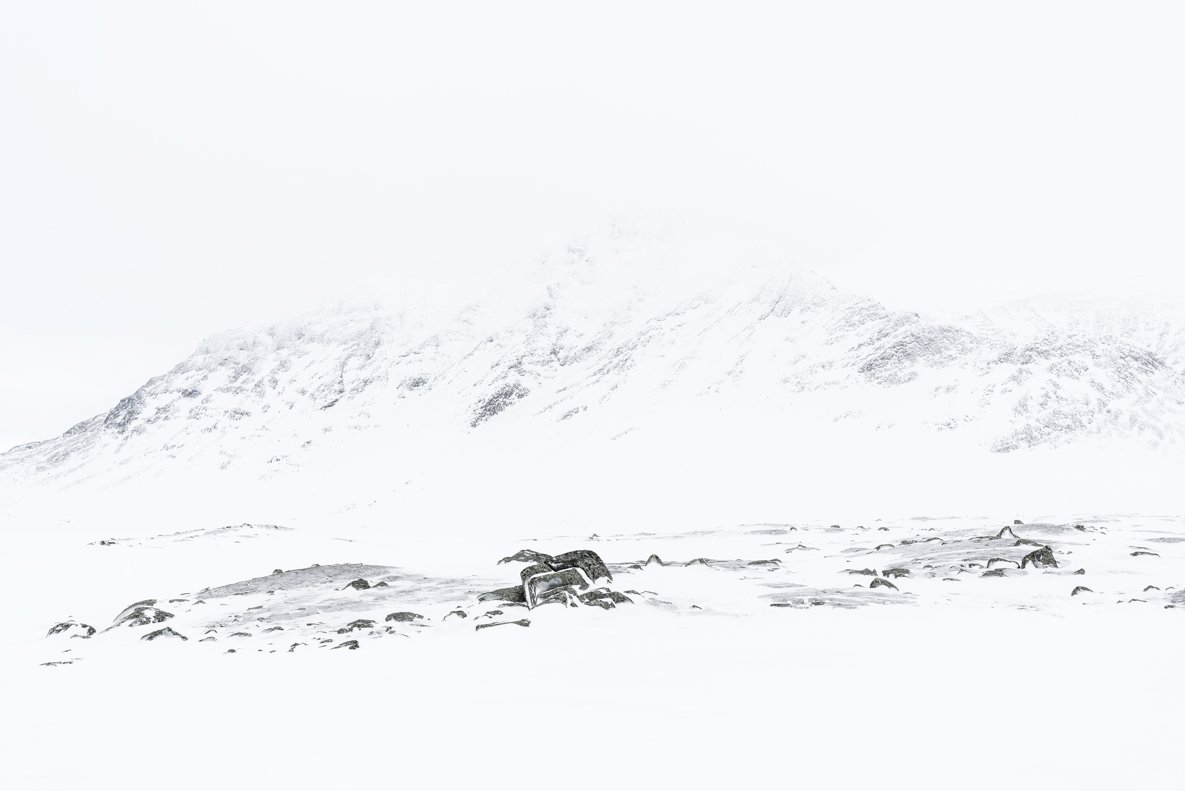 Mount Bierikbakte barely visible through the low clouds. Sarek National Park. March 2015.