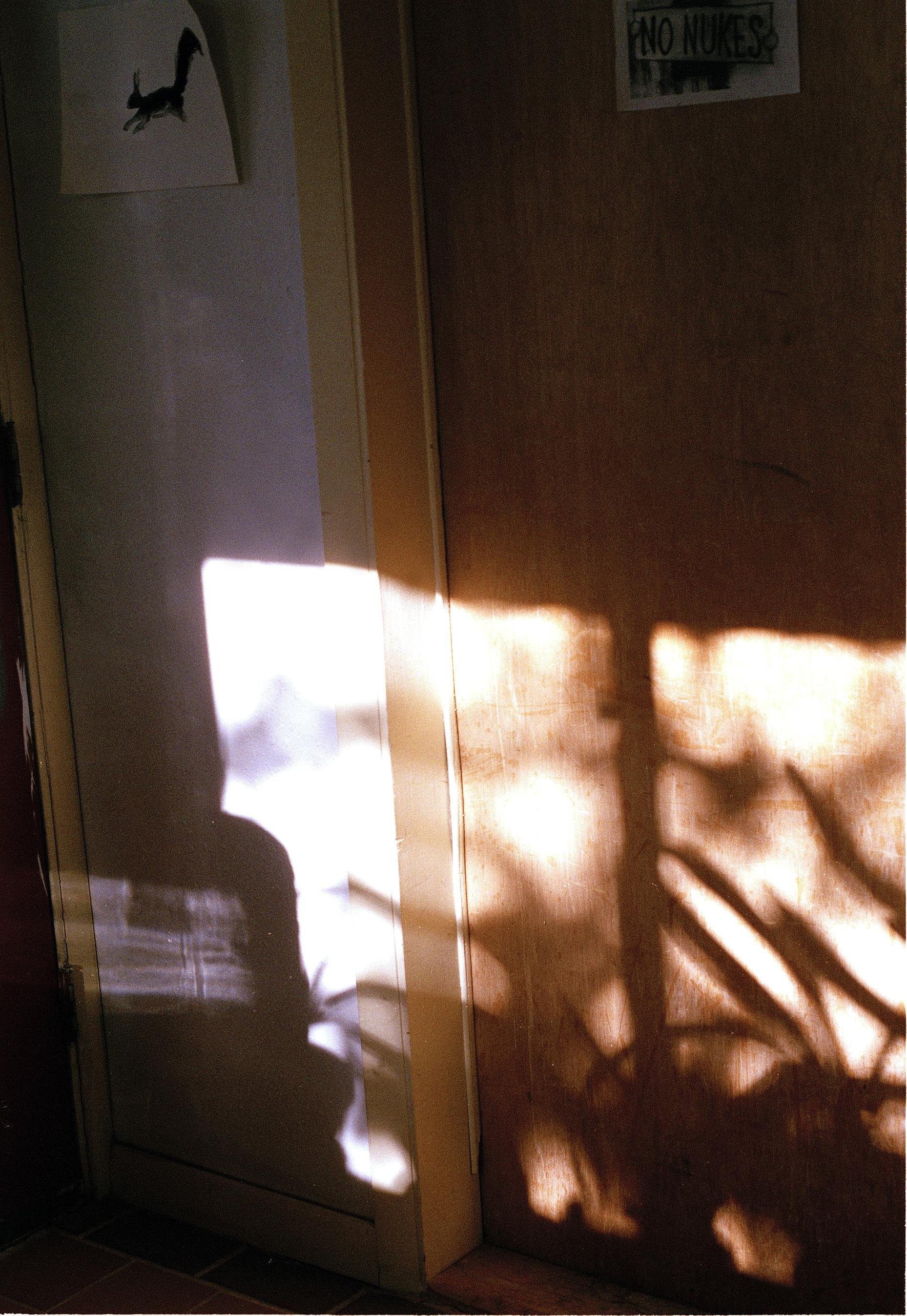 shadows-Edit-Edit.jpg
