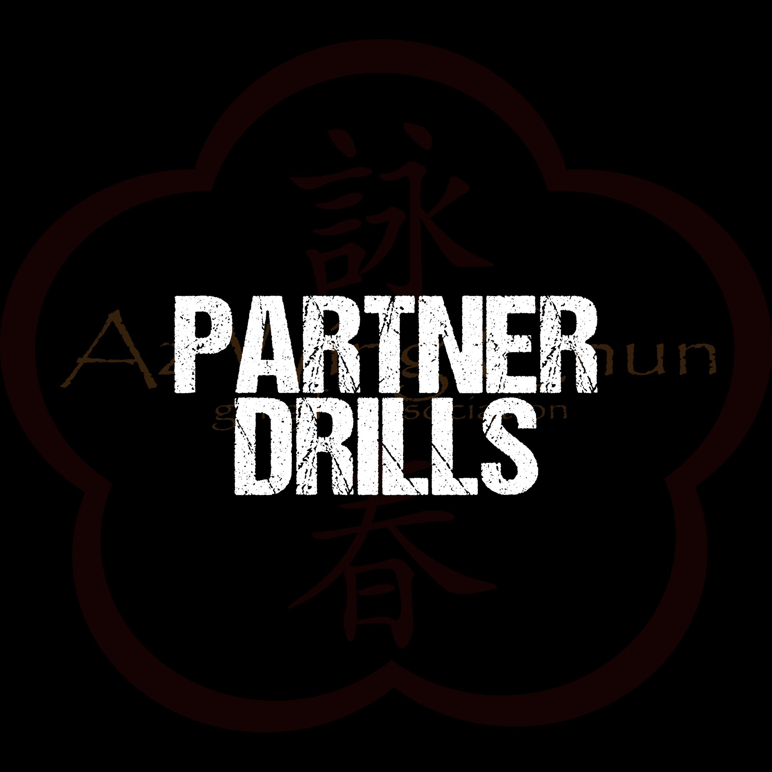 PARTNER DRILLS.png