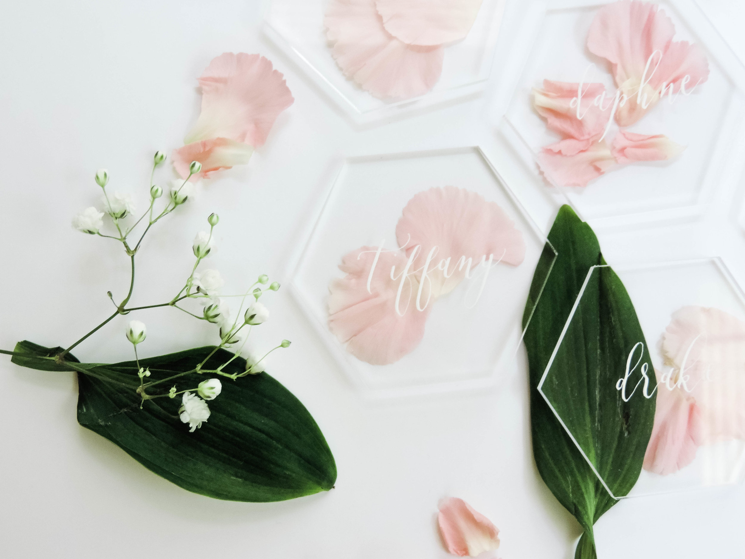 EMBELLISH - If you opt not to paint the backs these acrylic signs look stunning when placed in front of… well, anything! Just lay place cards over a bed of fresh or dried petals and greenery for a stunning display. You can also embellish acrylic sheets with gold foil, wax seals and ribbons!