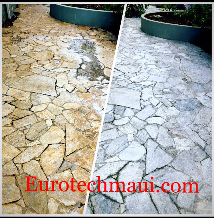 Quartzite floor cleaned by Eurotech Maui