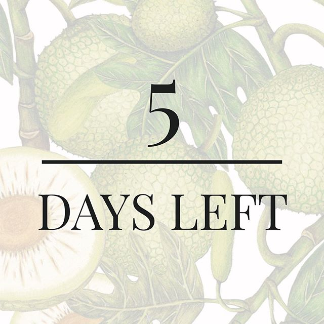 🌿 5 more days 🌿 Our #breadfruit flower extract contains a fatty acid called Azelaic Acid. This helps reduce the appearance of acne and redness. ✨ Fun fact: It's actually great for mosquito bites too! 😉