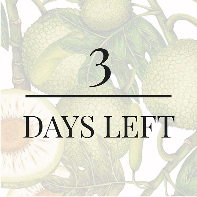 🌿 3 more days 🌿 Our impact matters 🙌 #Breadfruit is the key bioactive ingredient in all our products. 🌱 We source DIRECTLY from micro farmers in #Samoa. This increases breadfruit's value ✔️ and provides essential economic ✔️ social ✔️ and environmental ✔️ benefits to their communities.