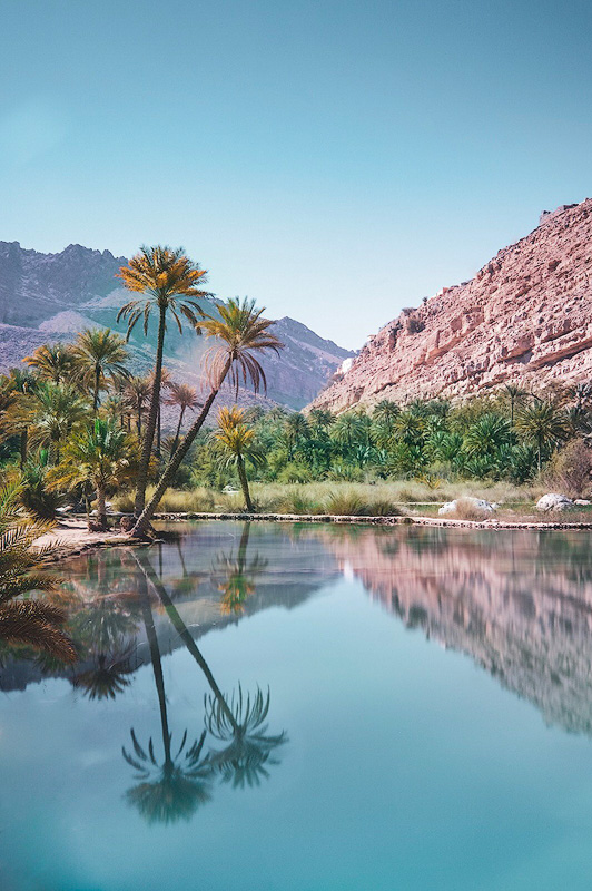 * Wadi: (in certain Arabic-speaking countries) a valley, ravine, or channel that is dry except in the rainy season.