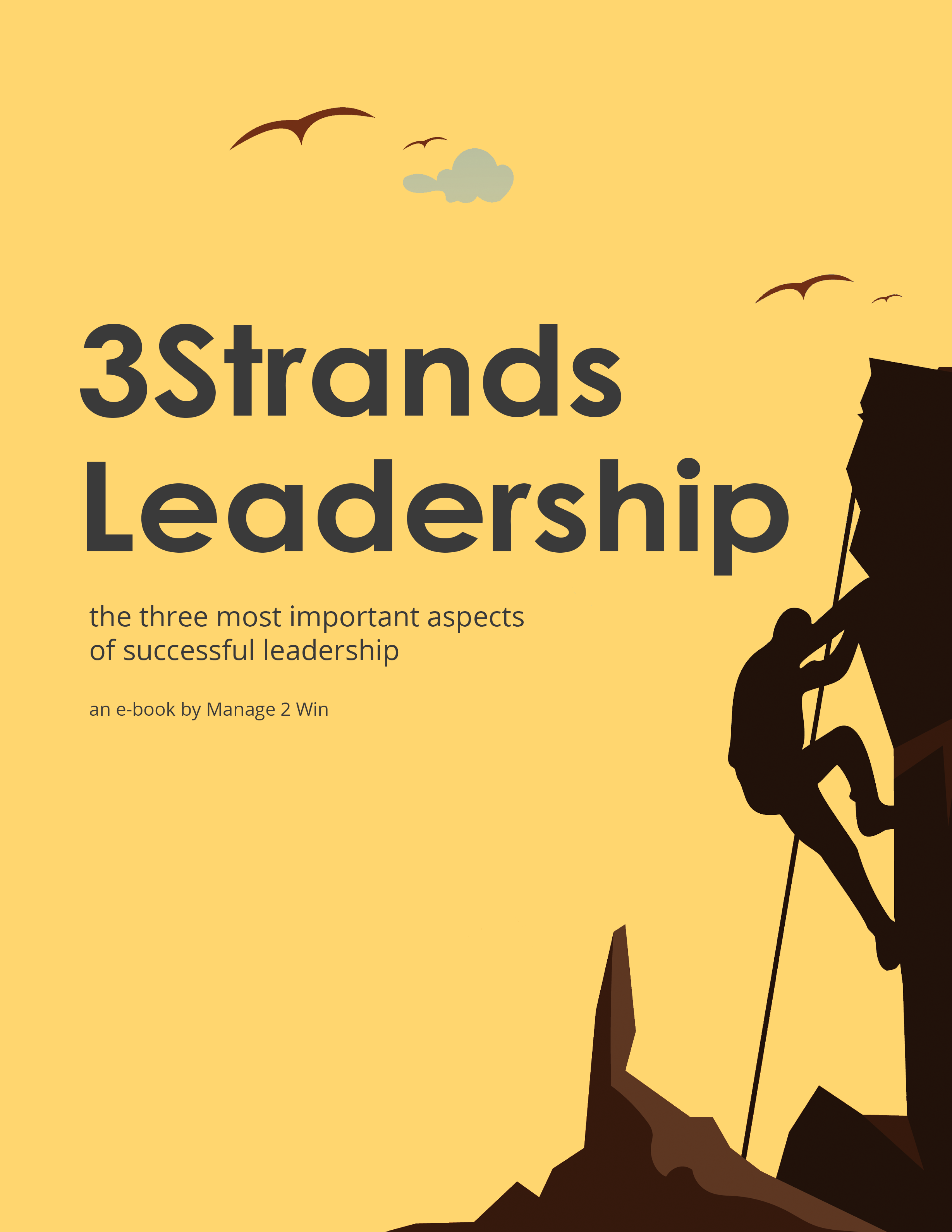 Book-Cover_3Strands-Leadership_v1_2458x3181.png