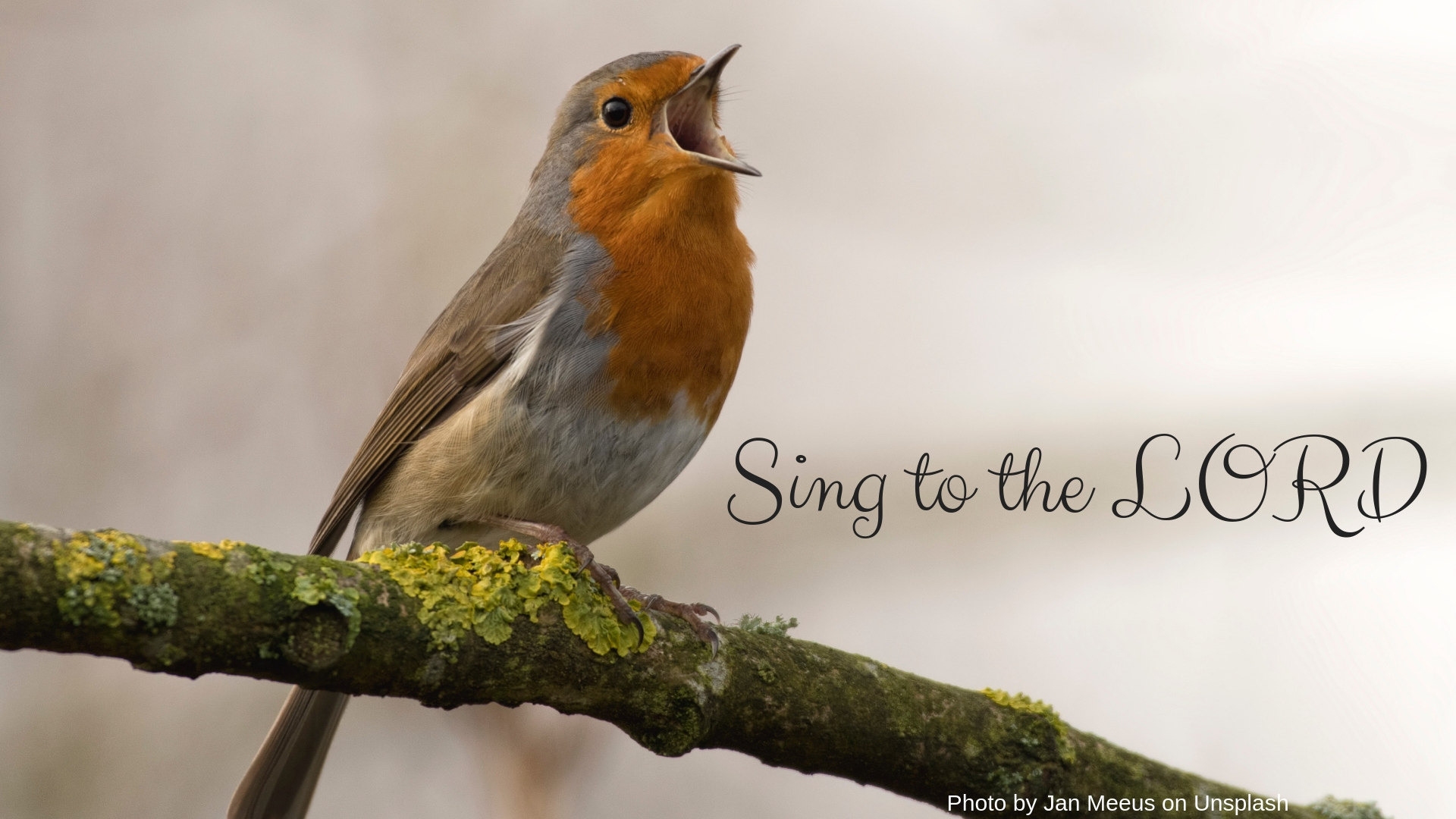 sing to the Lord.jpg