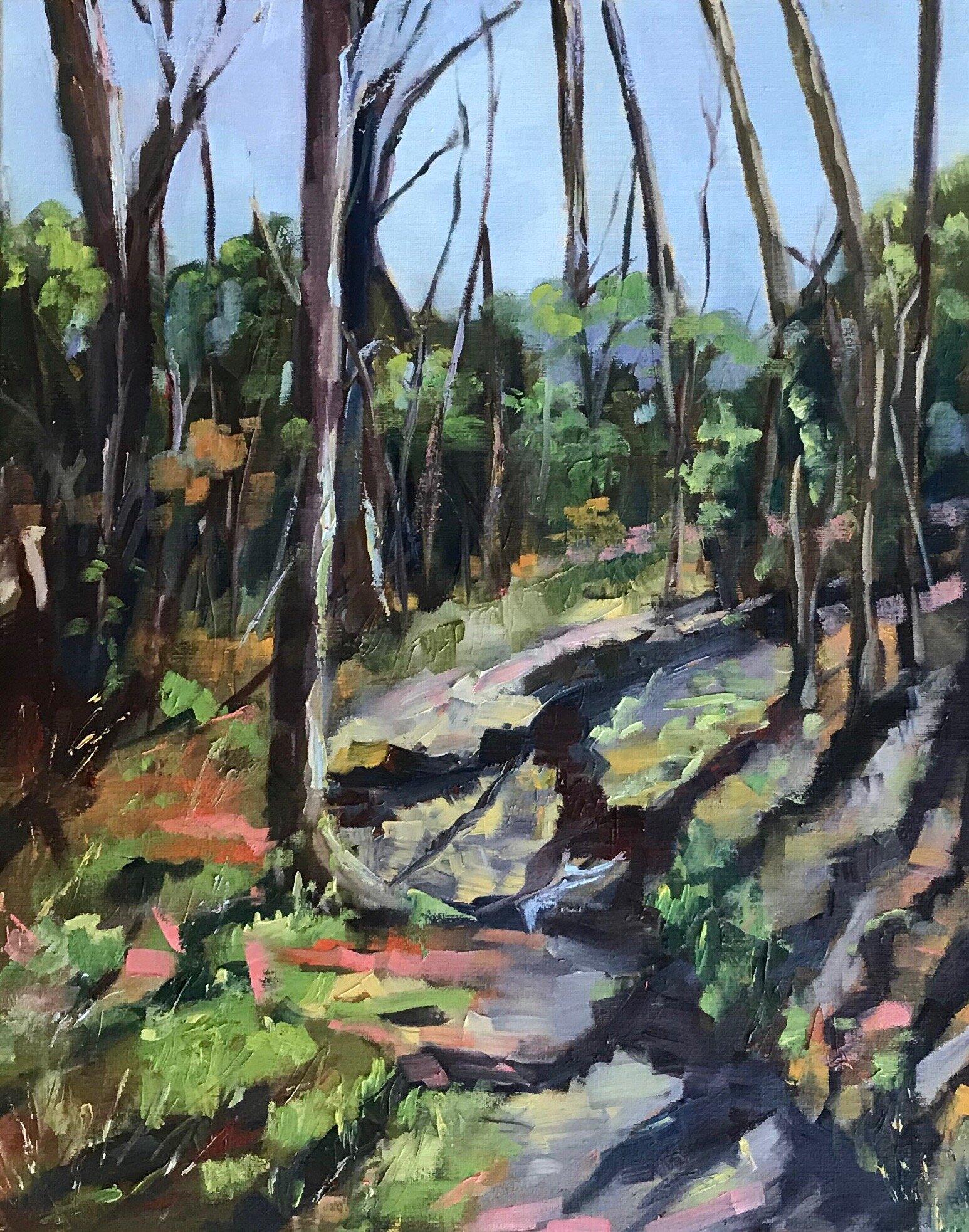 Trees & Shadows   Oil on Canvas   11 x 20