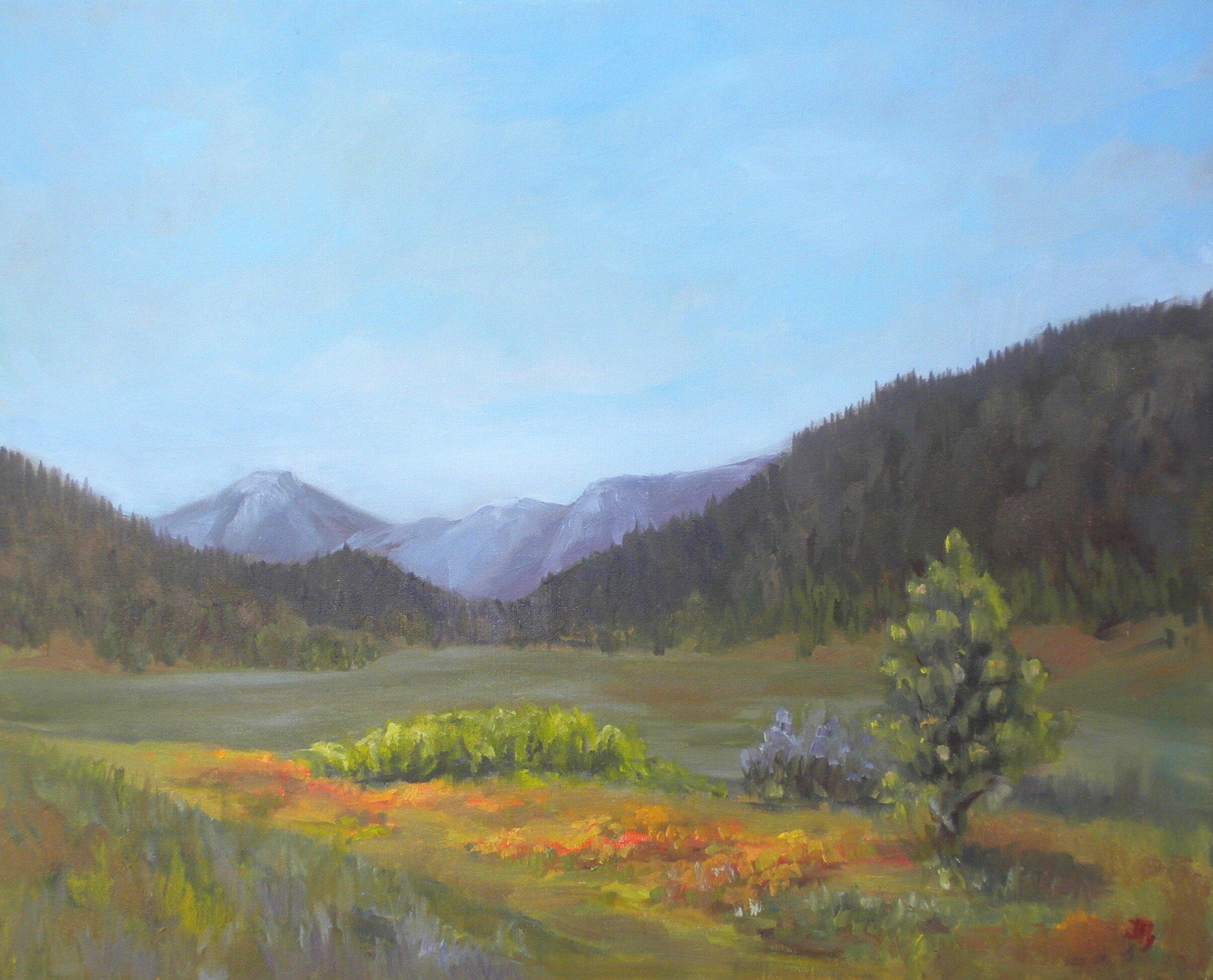 Carpenter Valley   Oil on Canvas   16 x 20