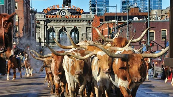 OneWest - How do we envision the future of the oldest and largest stock show in the U.S.?