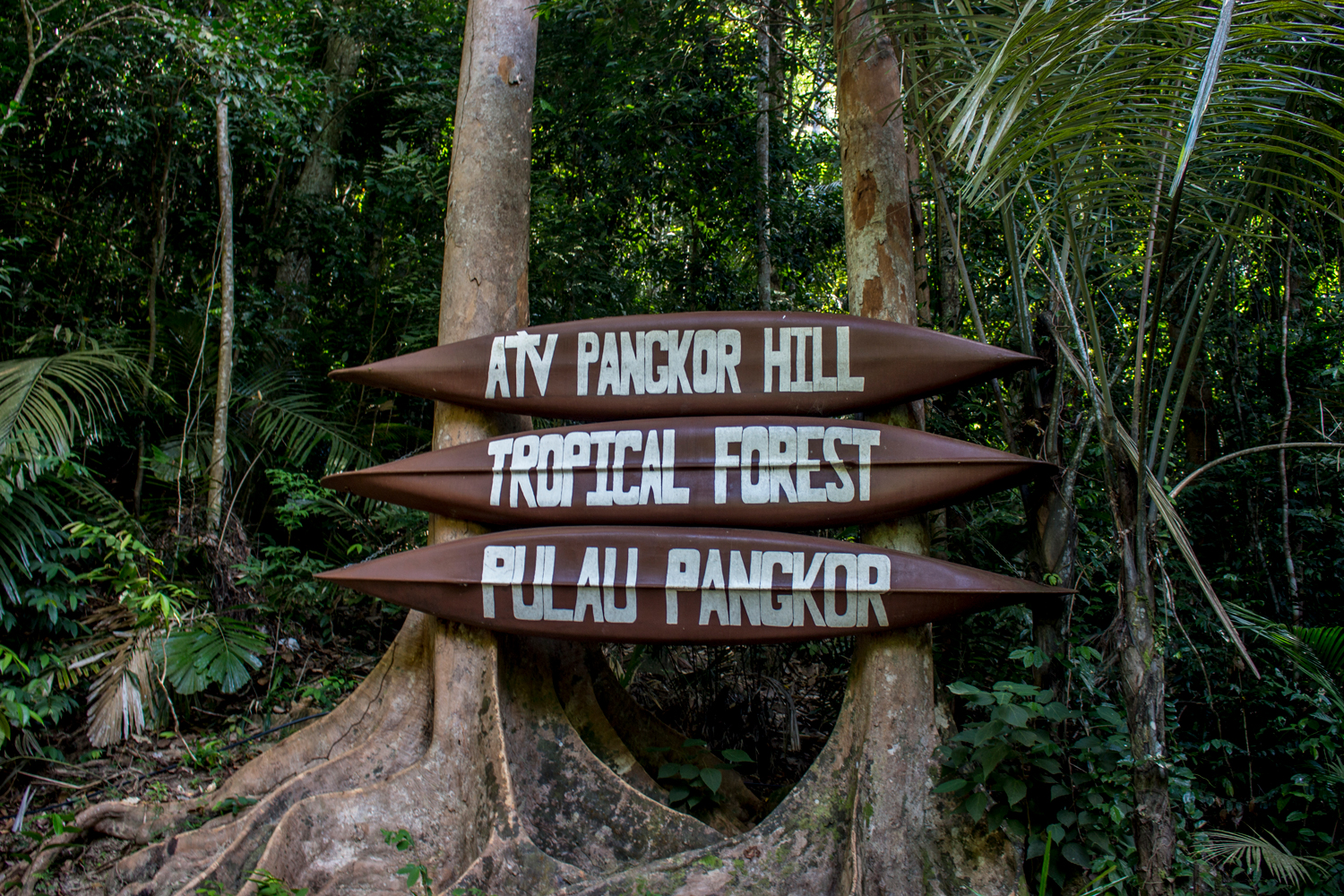 Hiking and Trial Sign in Pangkor