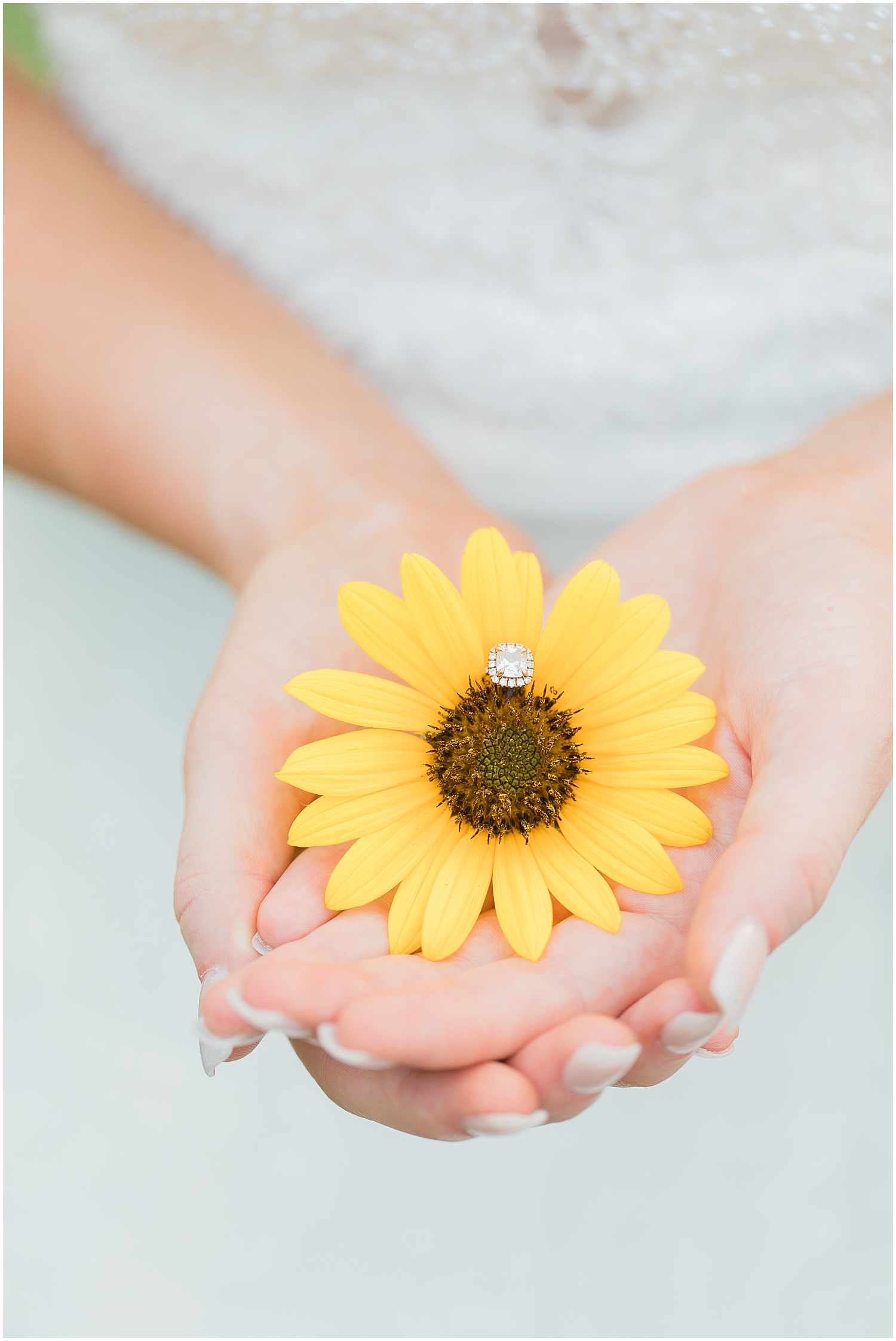 Sunflower and wedding ring