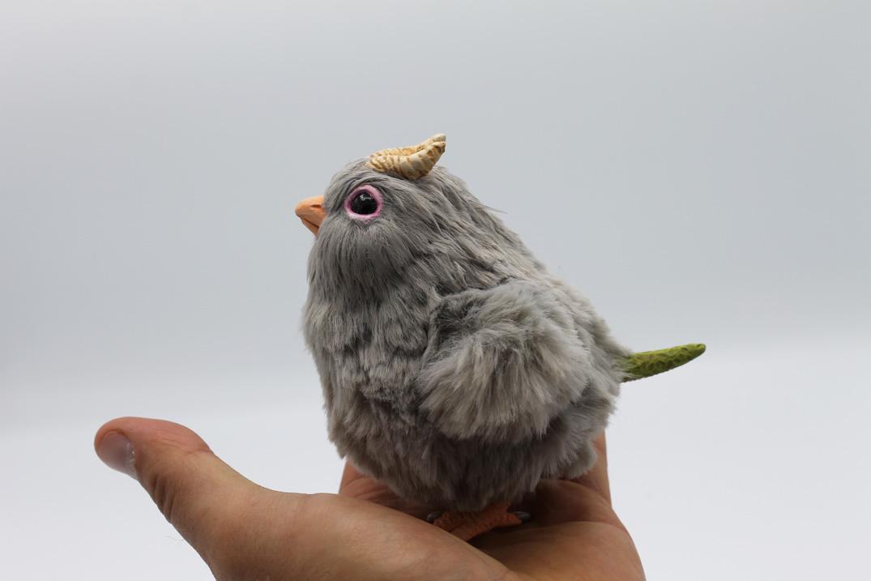 Gray Chick