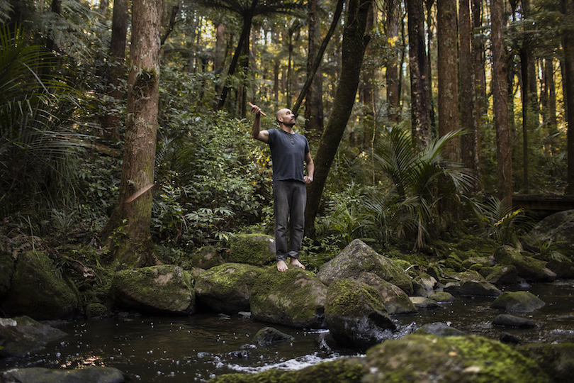 Kauri News stories    Photo essay: the people fighting kauri dieback