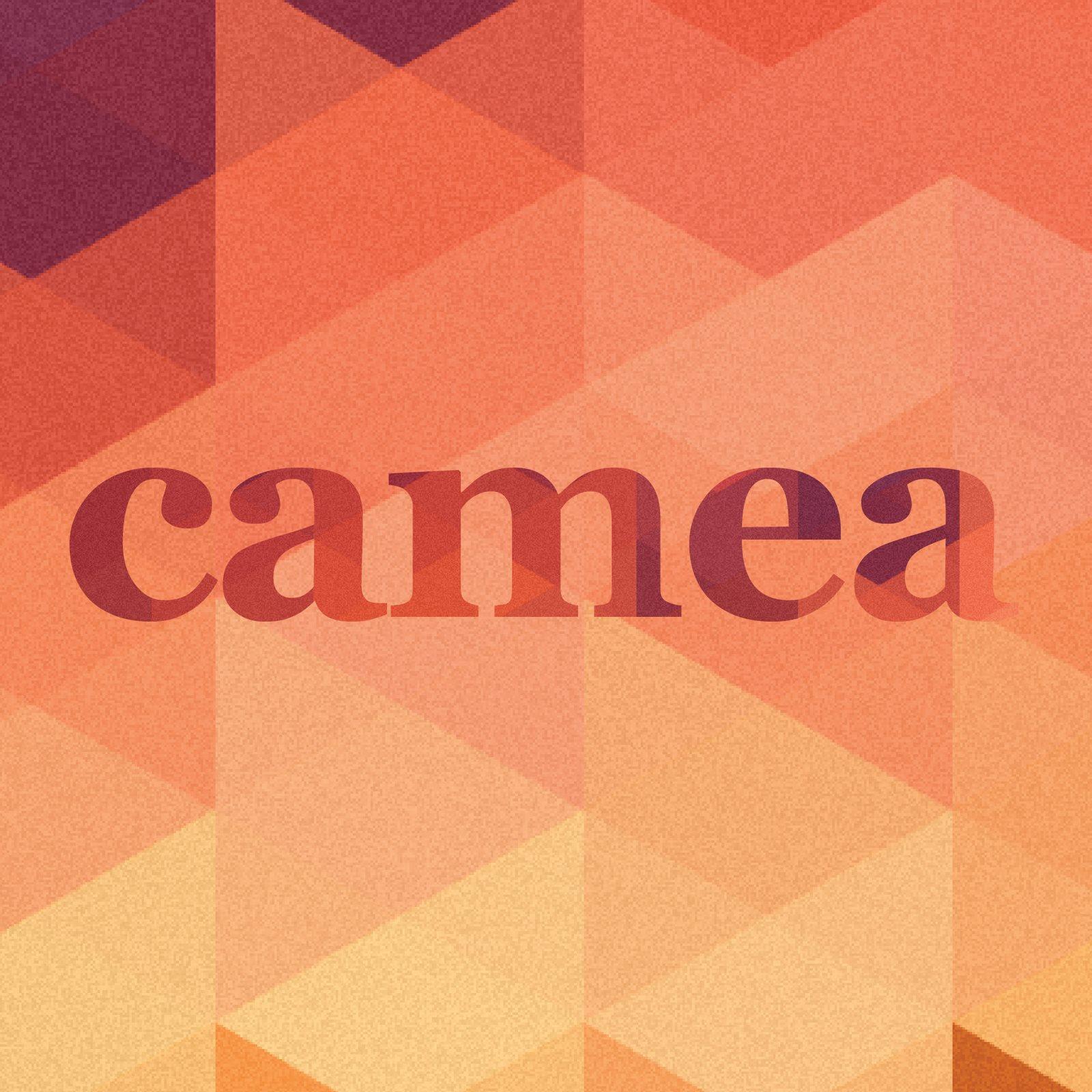 CAMEA (Image  © CAMEA)