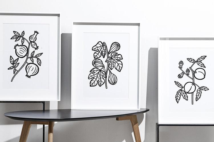 Lauren-Louisa-Graphic-Design-Work-Lauren-Louisa-Plant-Artwork-3.jpg
