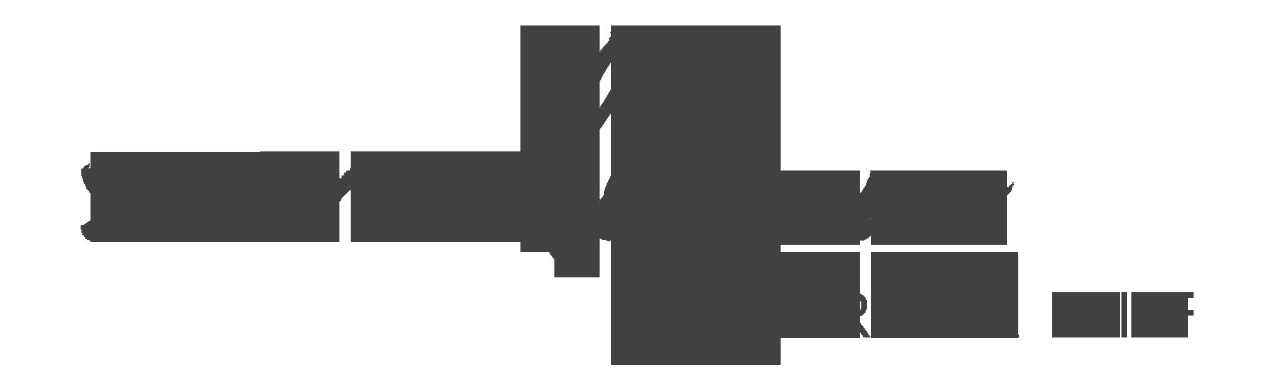 saralynn_logo_web_greay.png