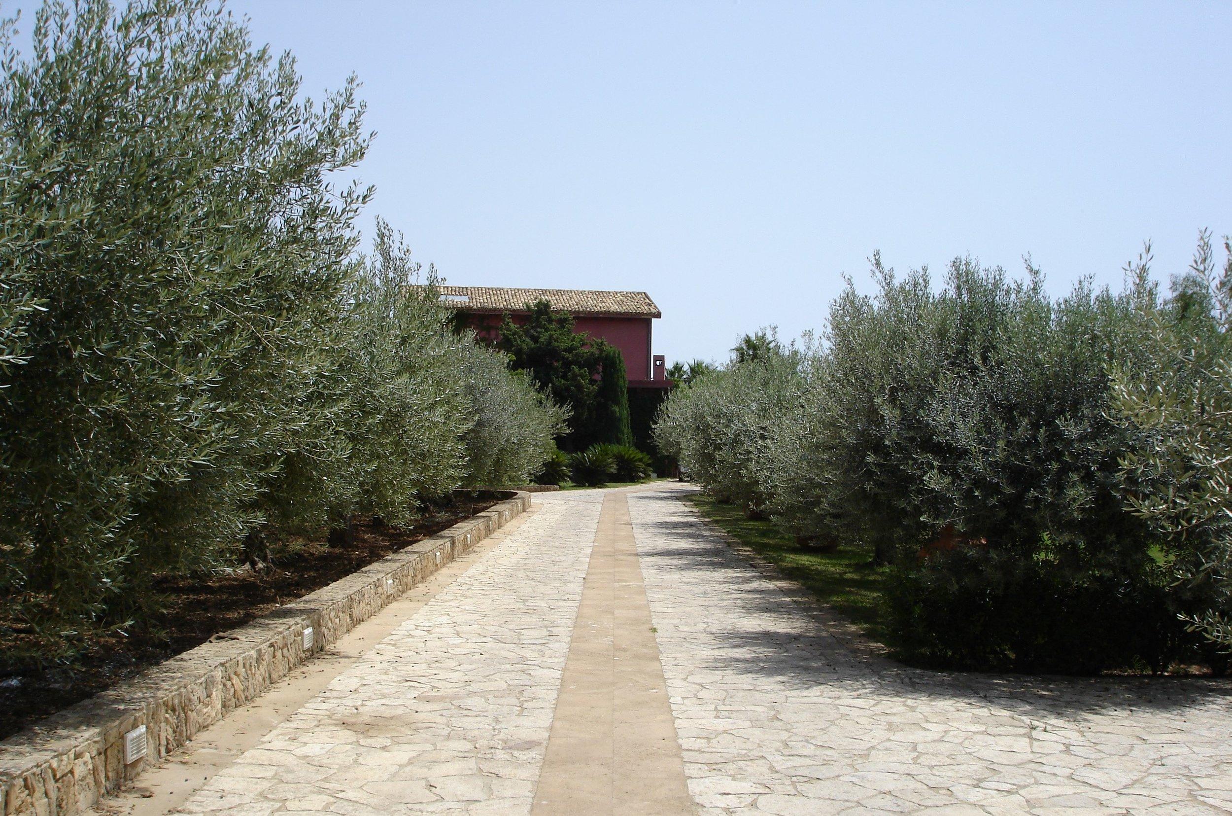 Sicilia0001.JPG