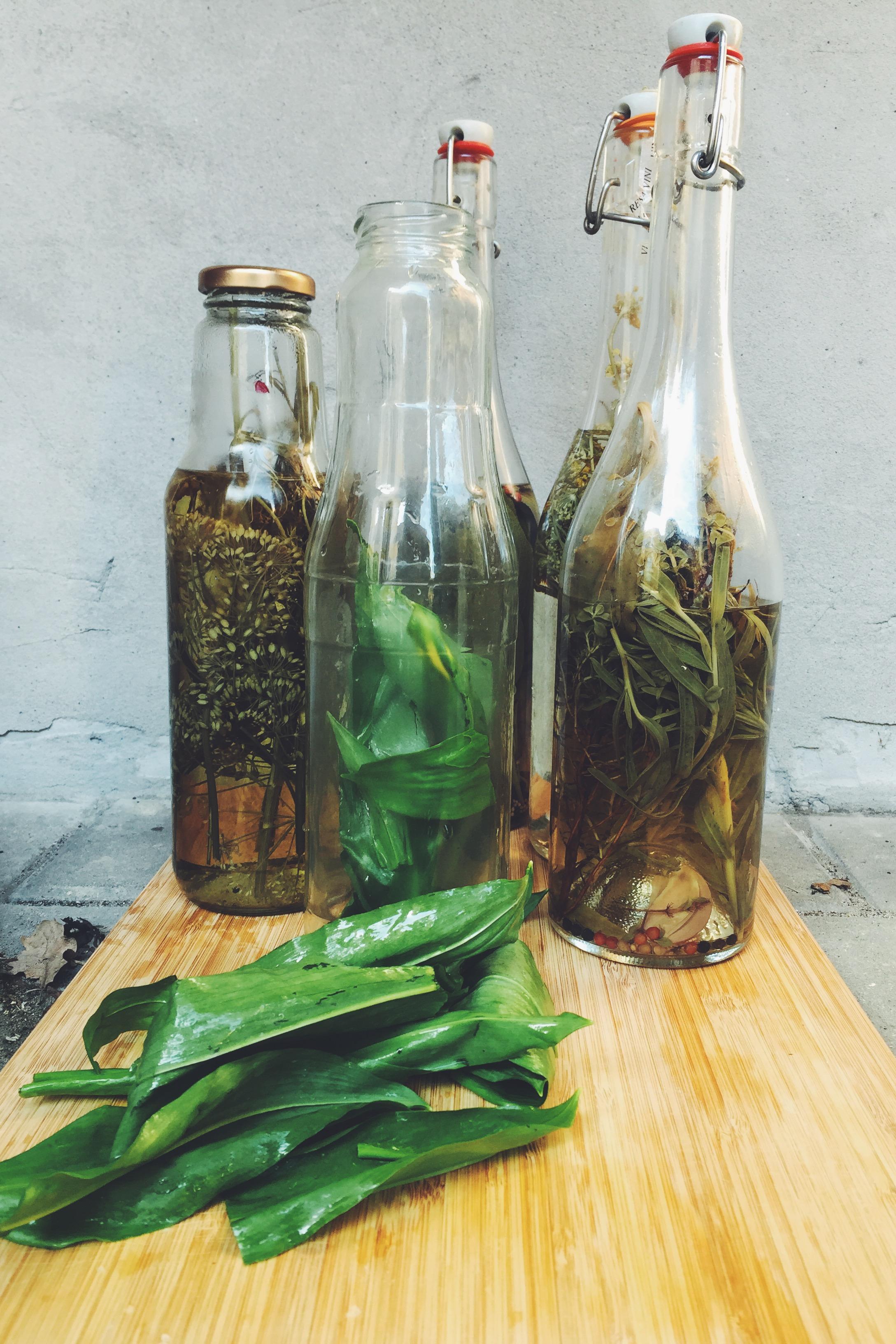 Kryddereddike -
