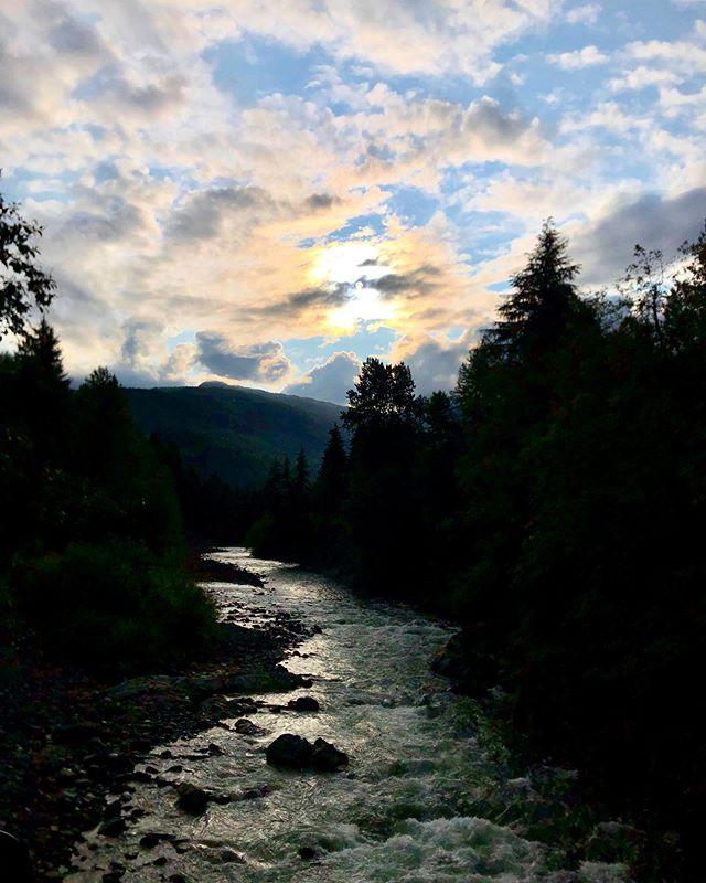 🌲🏞🌲 - A calm ocean is never afraid of a raging river. -Matshona Dhliwayo -