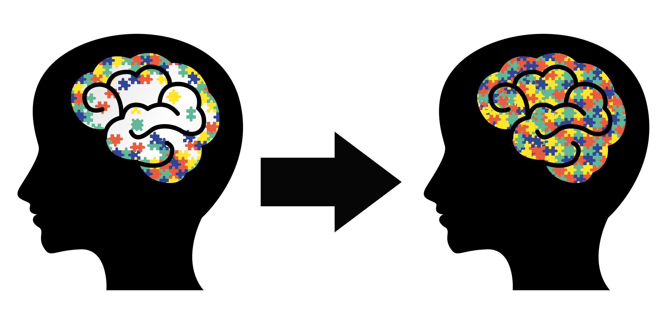 brain(1).jpg